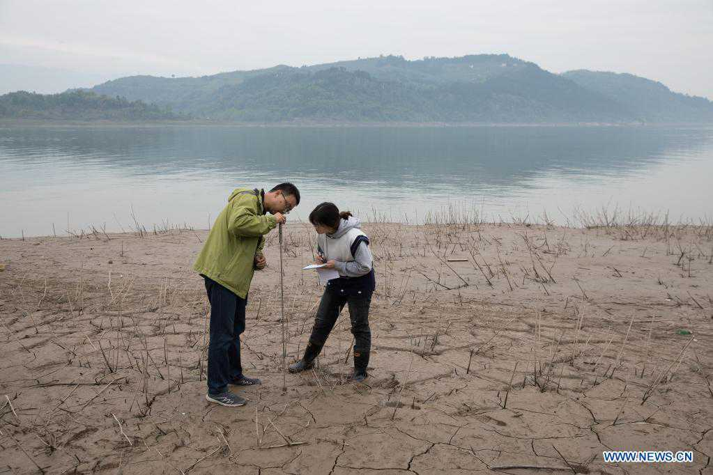 Chinese researchers conduct environment study in Three Gorges Reservoir area
