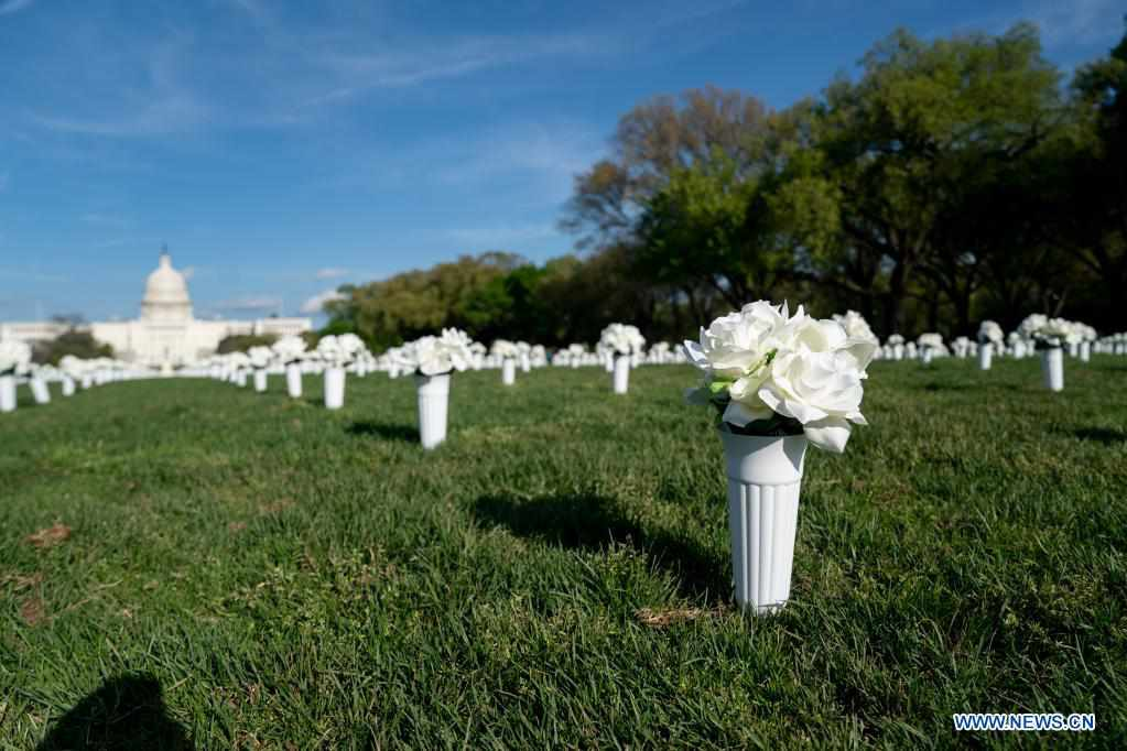 40,000 white silk flowers installed on National Mall in Washington, D.C.