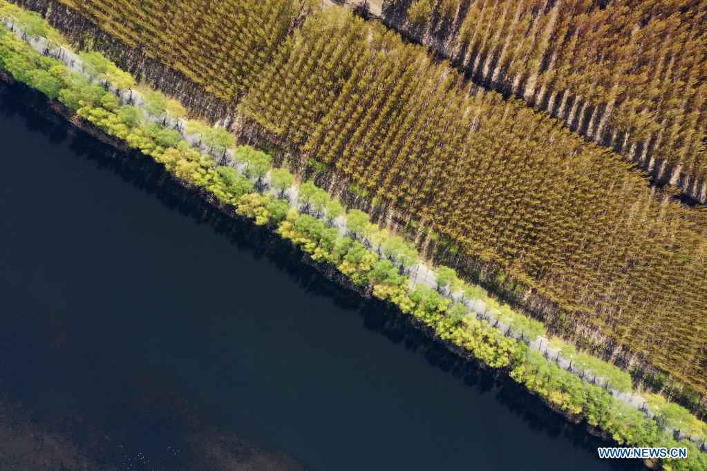 Water management program improves urban landscape in Tangshan, N China