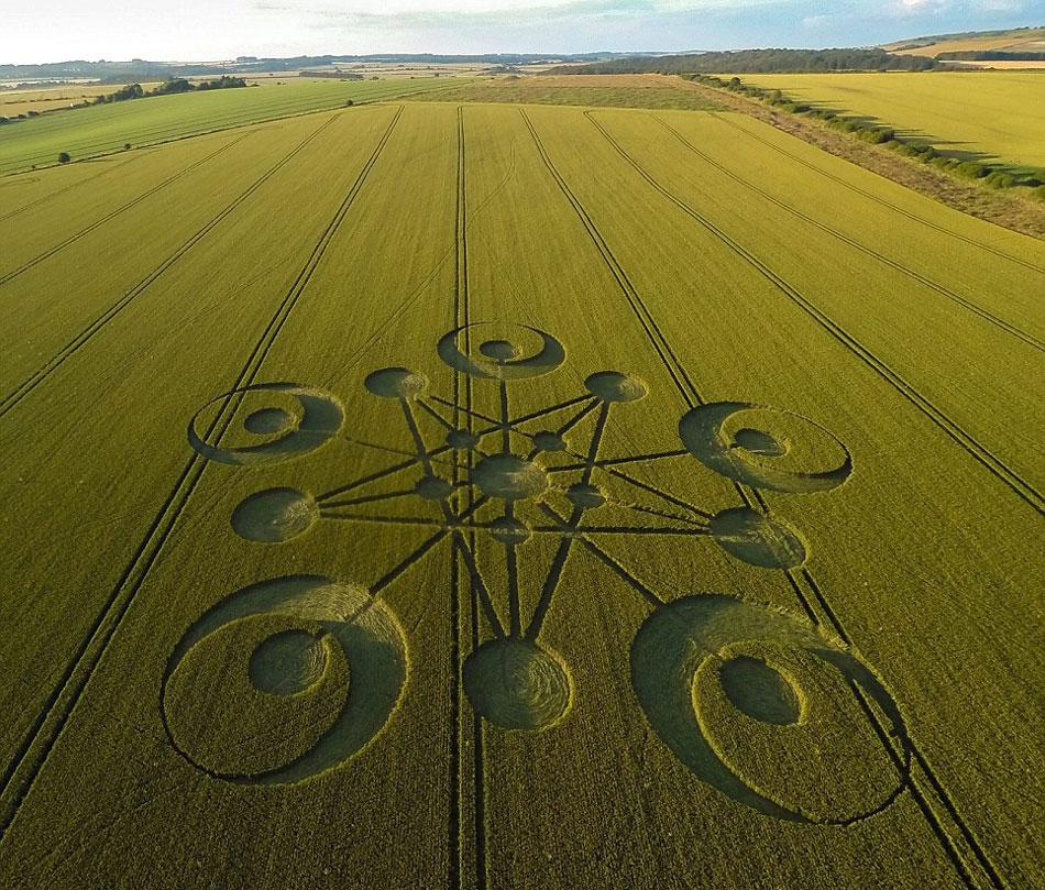 英国多塞特郡布兰德福特福鲁姆附近农田中惊现今年以来首个麦田怪圈,有关其代表含义以及创作者引发诸多猜测。(网页截图)