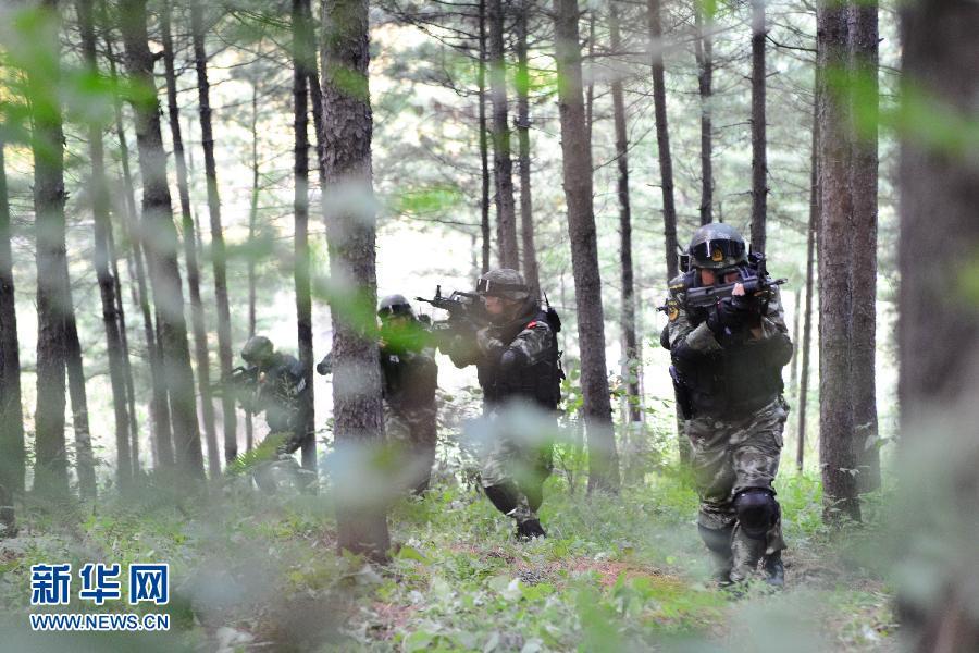 8月28日,特战队员在深山展开丛林战术搜索演练。