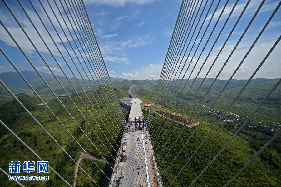 8月29日拍摄的大桥斜拉索。