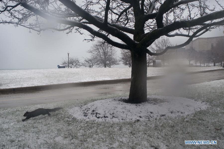 US-CHICAGO-SNOW