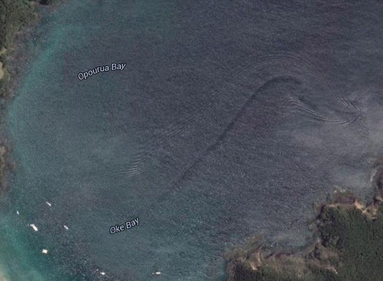"""新西兰工程师在谷歌地图发现疑似""""海怪""""伴流【2】"""