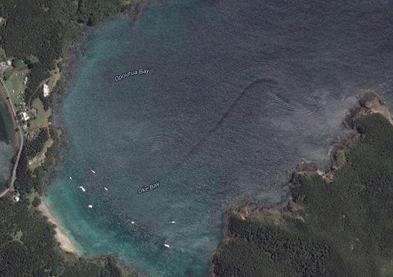 """新西兰工程师在谷歌地图发现疑似""""海怪""""伴流"""