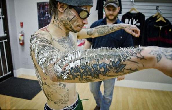 美纽约州将立法禁止给宠物纹身 艺术家给猪纹身一张猪皮价值100万 t