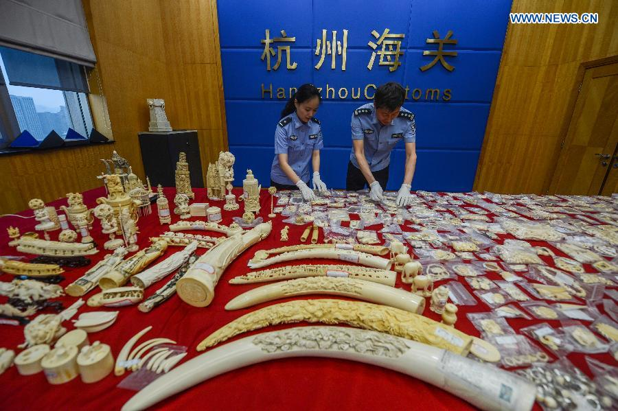 Photo taken on May 18, 2015 shows smuggled artworks made of ivory seized by members of Hangzhou Customs, in Hangzhou, east China's Zhejiang Province. Hangzhou Customs announced Thursday that they have seized over 270 kilograms smuggled ivory and about 9 kilograms rhino horn since June last year.