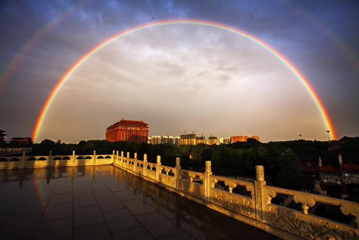 中信国安第一城第十二届荷花节手机微信摄影大