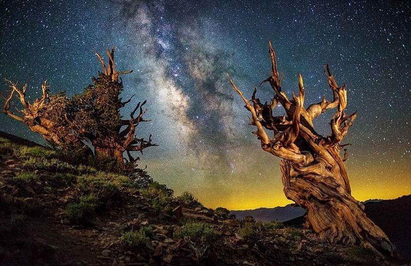 美摄影师拍夏威夷星空夜景 美轮美奂 - 海阔山遥 - .