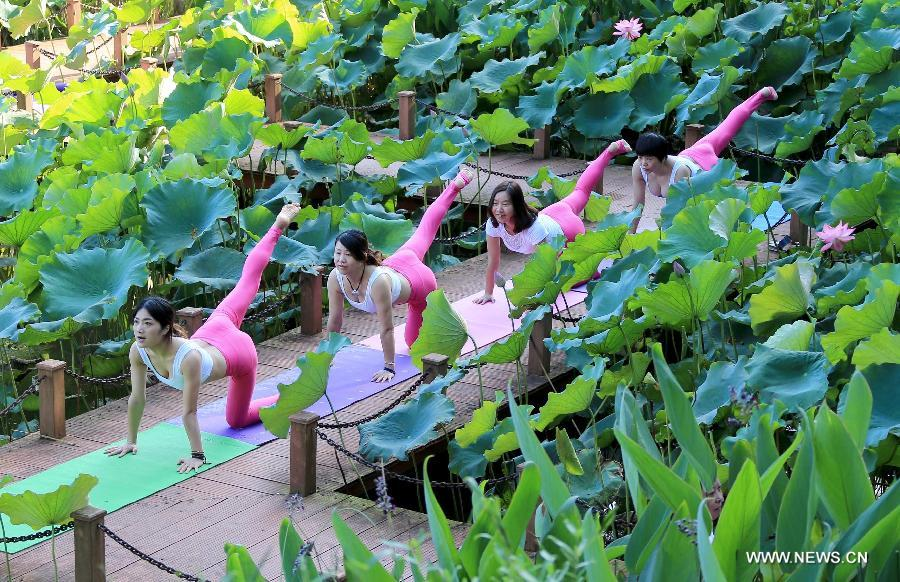 A yoga lover practises yoga beside a lotus pool in Jilingshan Park in Huangshan City, east China's Anhui Province, July 12, 2015