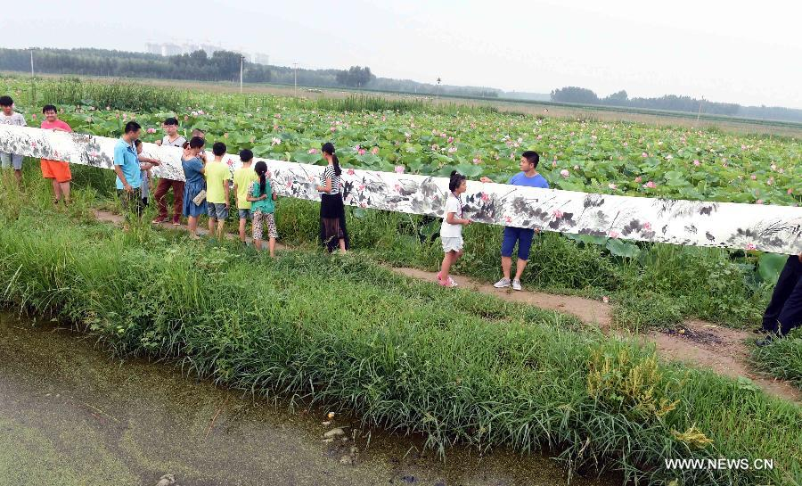 Spectators look at a lotus painting before a lotus pond in Xianghe County of Langfang city, north China's Hebei Province, July 17, 2015.