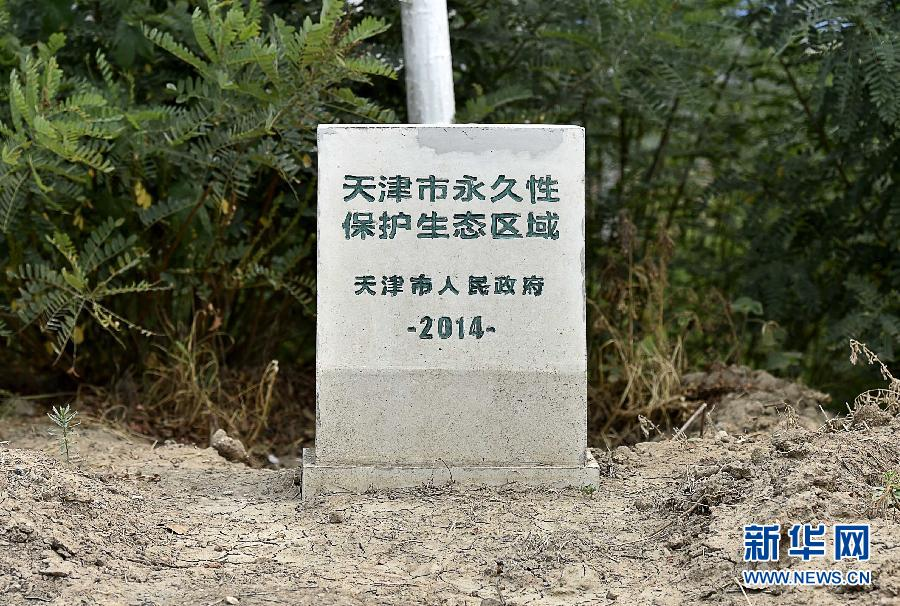 (生态)(6)天津:污染十年 独流减河何日返清?
