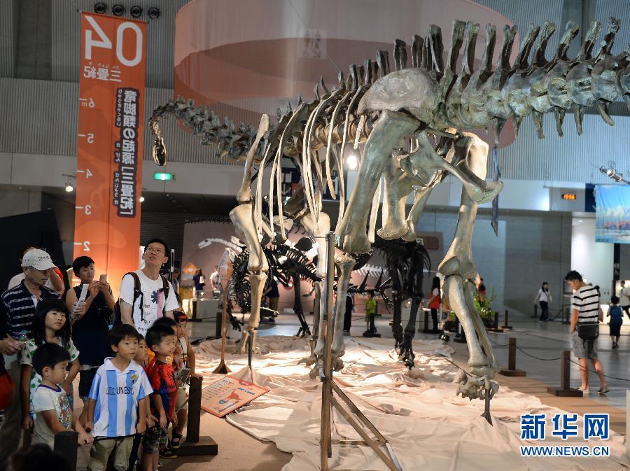 """(国际)(1)""""2015恐龙展――逼近巨大之谜""""在日本开幕"""