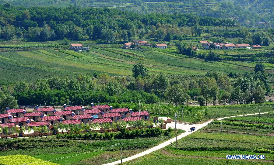 A forest covers a village in Jingyuan County, northwest China's Ningxia Hui Autonomous Region, Aug. 6, 2015.