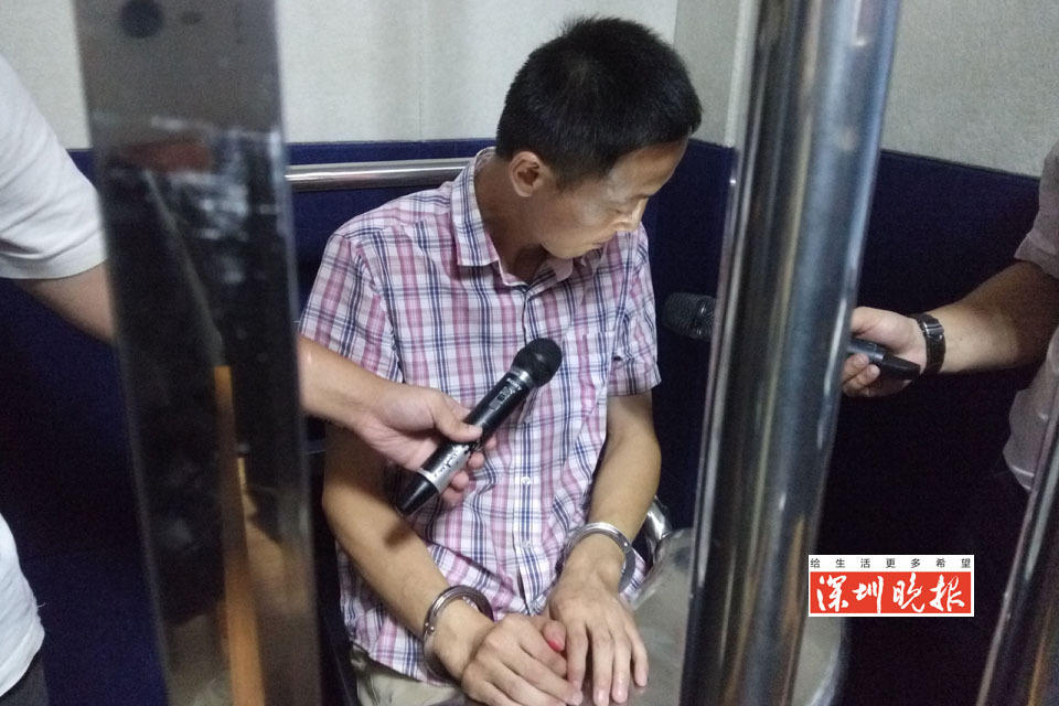 """深圳保安1年开房90次 专""""钓""""90后女孩偷财物"""