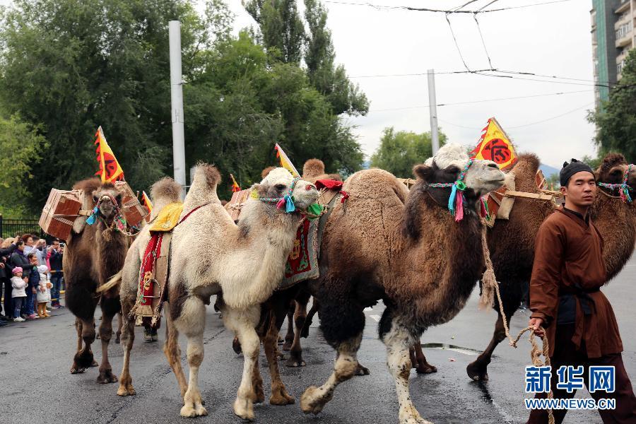 (国际・一带一路)(2)重走丝绸之路的中国大型驼队抵达阿拉木图