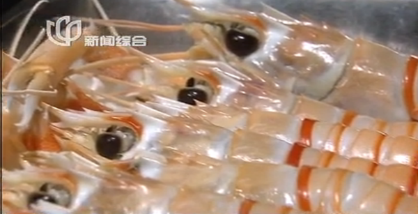 上萬箱過期進口鰲蝦流入滬蘇市場1600箱未追回