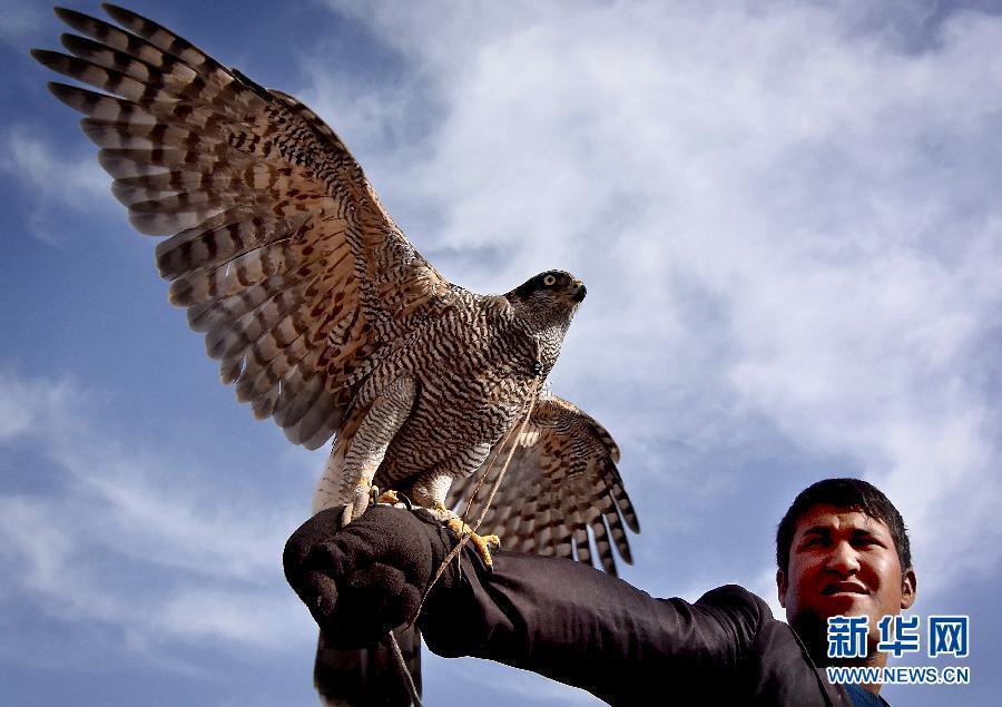 (社会)(1)在丝路之驿体验南疆风情