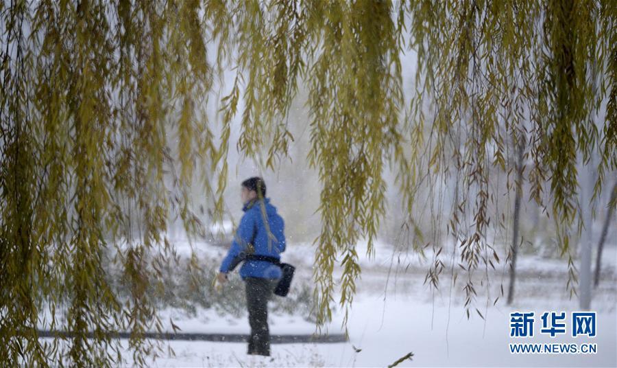 (生态)(1)北京:燕山深处雪飘飘