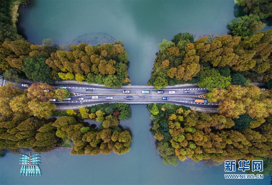 """(美丽中国)(1)寒潮来袭 杭州西湖开启最美""""七彩深秋"""""""