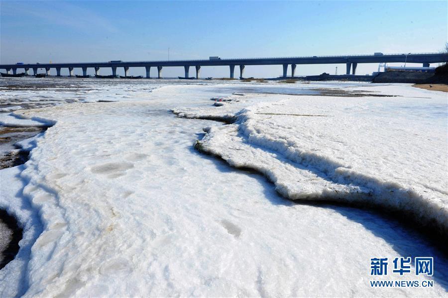 #(生态)(2)山东胶州湾初现海冰