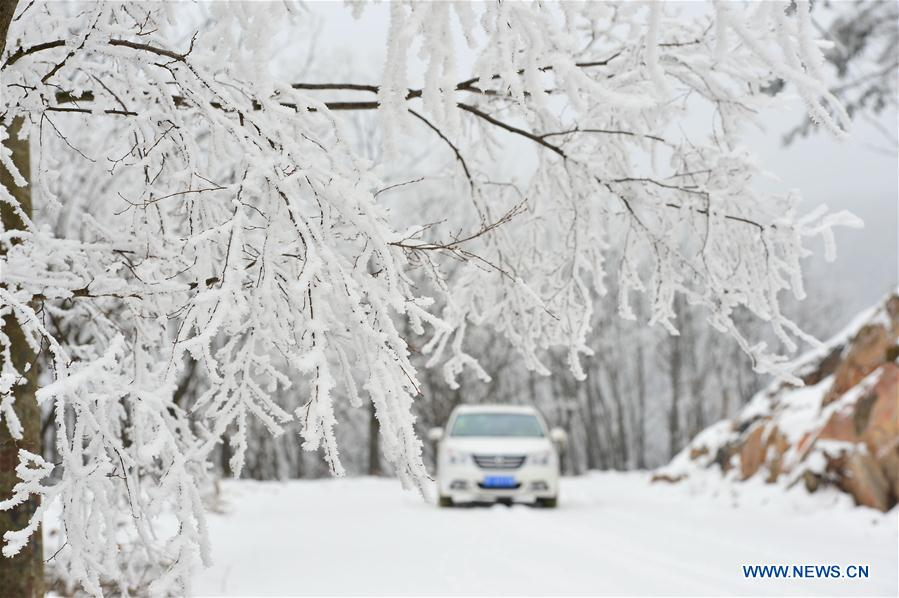 Photo taken on Jan. 13, 2016 shows the rime scenery at Longping Township of Baokang County in Xiangyang City, central China's Hubei Province.