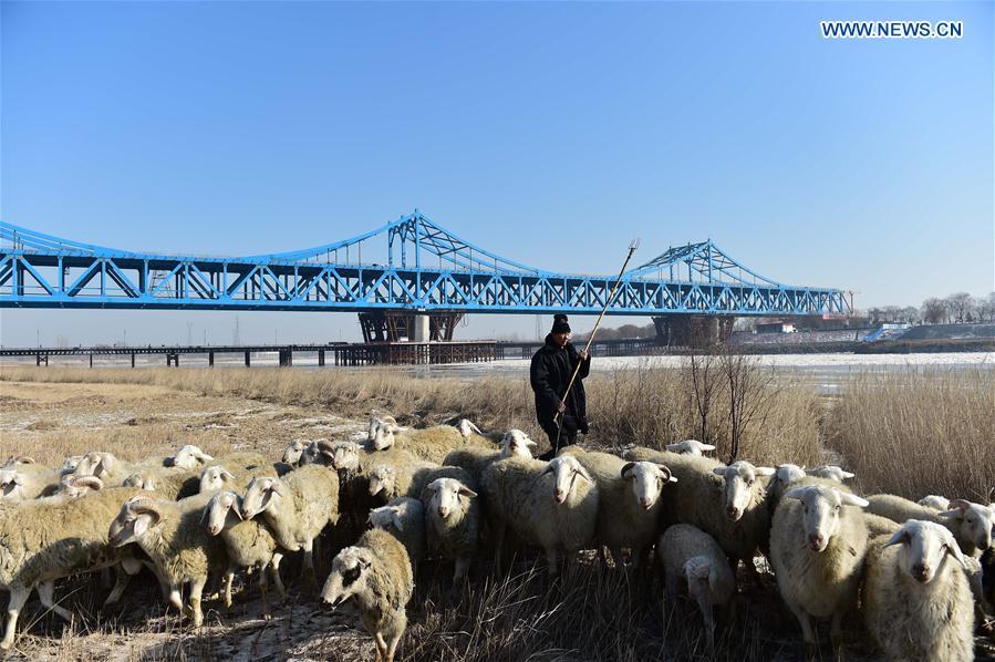 CHINA-JINAN-RAILWAY AND HIGHWAY COMBINED BRIDGE-CONSTRUCTION (CN)