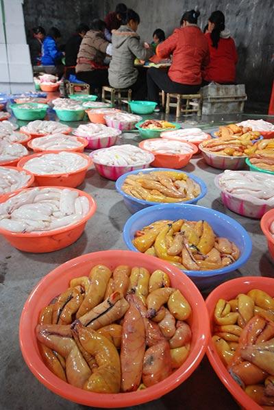 Spring Festival Eve dinners around China