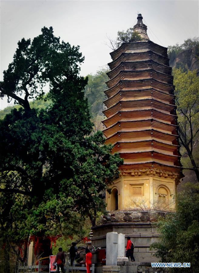 CHINA-ANCIENT PAGODAS (CN)