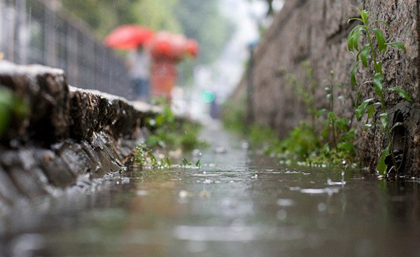 Culture Insider: 5 things you may not know about Rain Water