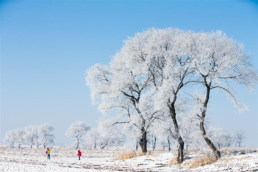 Tourists enjoy the rime scenery at a scenic spot in Jilin, northeast China's Jilin Province, Feb. 23, 2016.