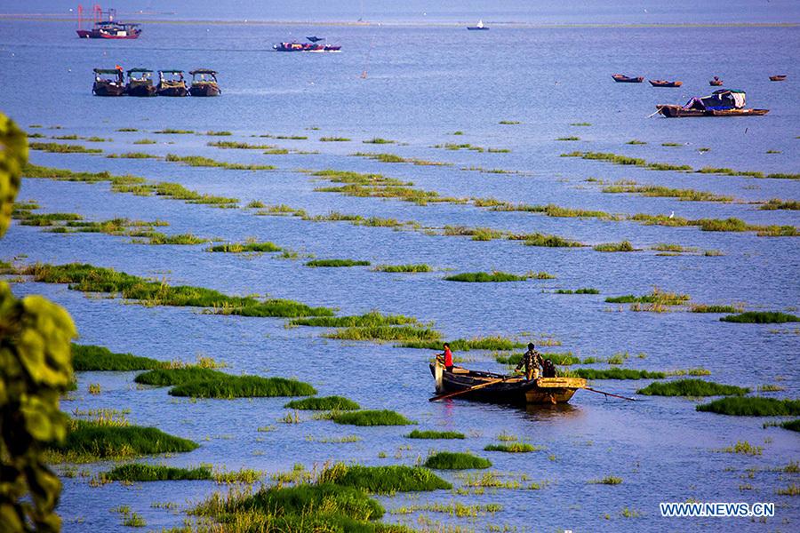 Fishing boats sail on the Poyang Lake in Duchang County, east China's Jiangxi Province, Sept. 20, 2014.