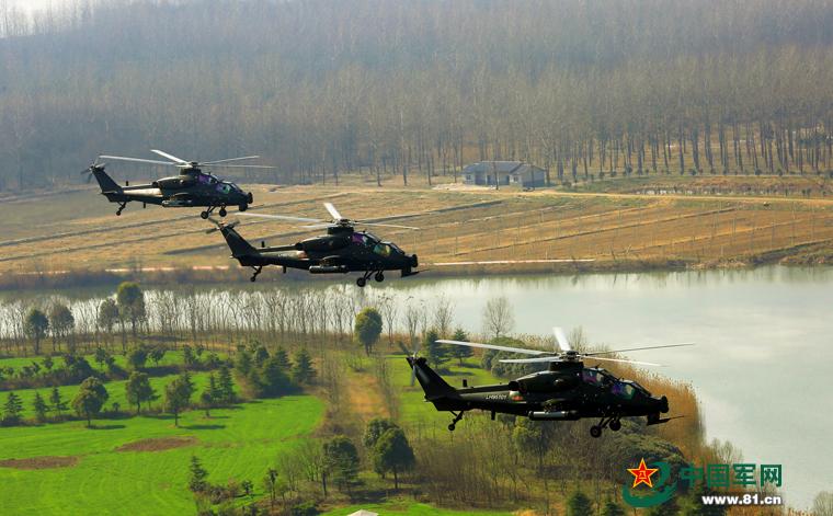 陆军某部超低空训练 武直-10飞于树梢之上【3】