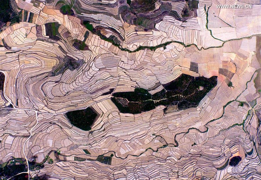 CHINA-GUANGXI-BAISE-WATERMELON TERRACES (CN)
