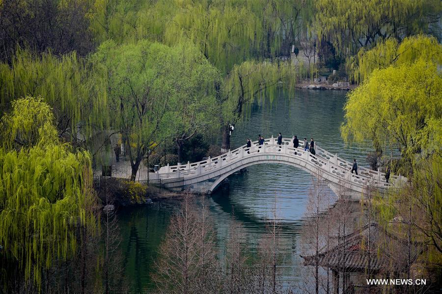 CHINA-JINAN-DAMING LAKE-SCENERY (CN)