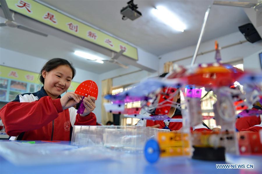 CHINA-HEBEI-EDUCATION-ROBOT (CN)