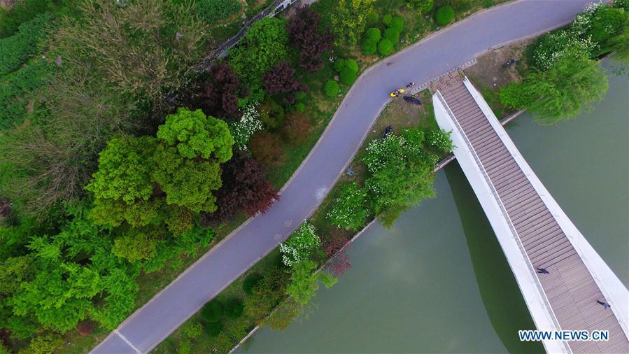 In pics: spring scenery of Beijing-Hangzhou Grand Canal