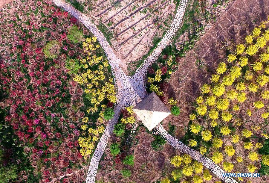 CHINA-TIANJIN-SPRING SCENERY (CN)