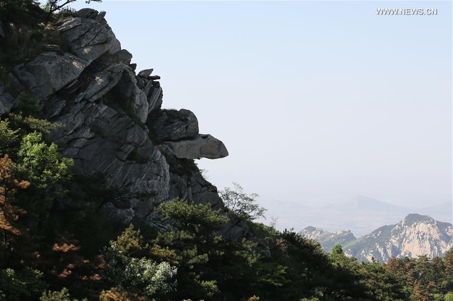 Scenery of Yimeng Mountain in E China