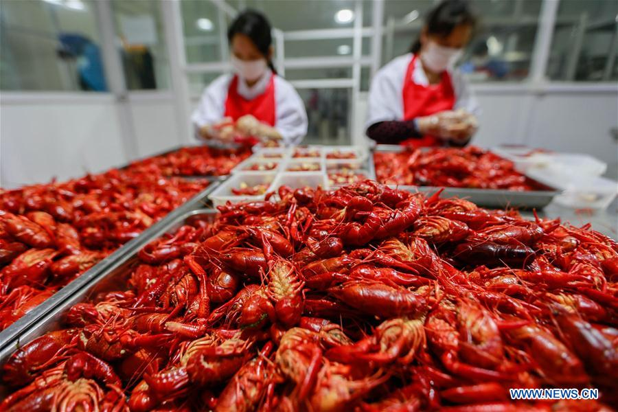 #CHINA-JIANGSU-XUYI-CRAYFISH (CN)