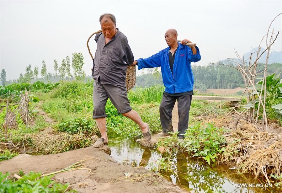 CHINA-HEBEI-BLIND MAN AND ARMLESS MAN-TREE PLANTING(CN)