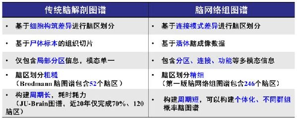 中国科学家领衔绘制出全新的人类脑图谱