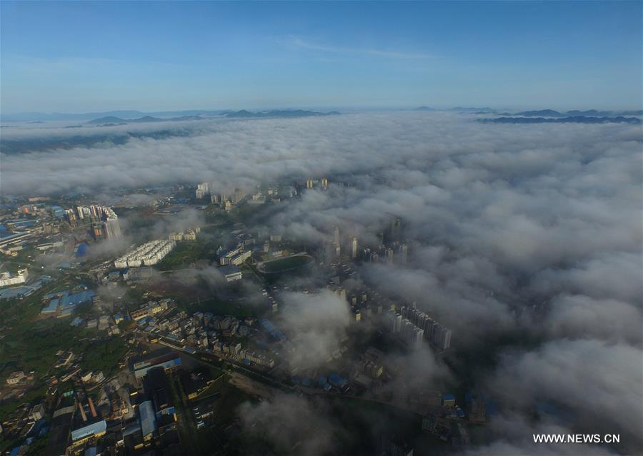 Qinzhou City enveloped by fog in south China