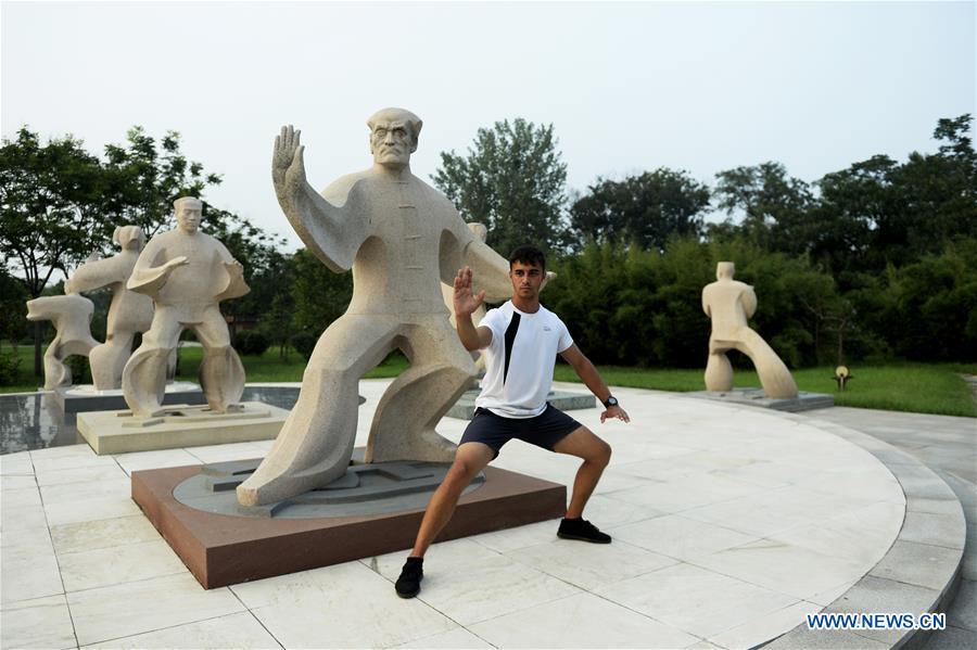 CHINA-HENAN-CHENJIAGOU-TAIJI-FOREIGN LEARNERS (CN)