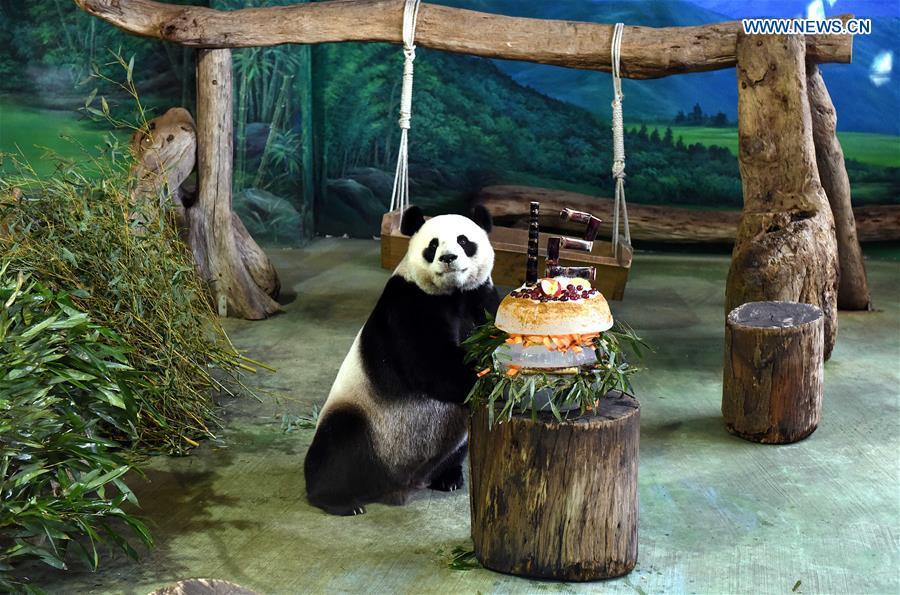 CHINA-TAIPEI-GIANT PANDAS-BIRTHDAY (CN)