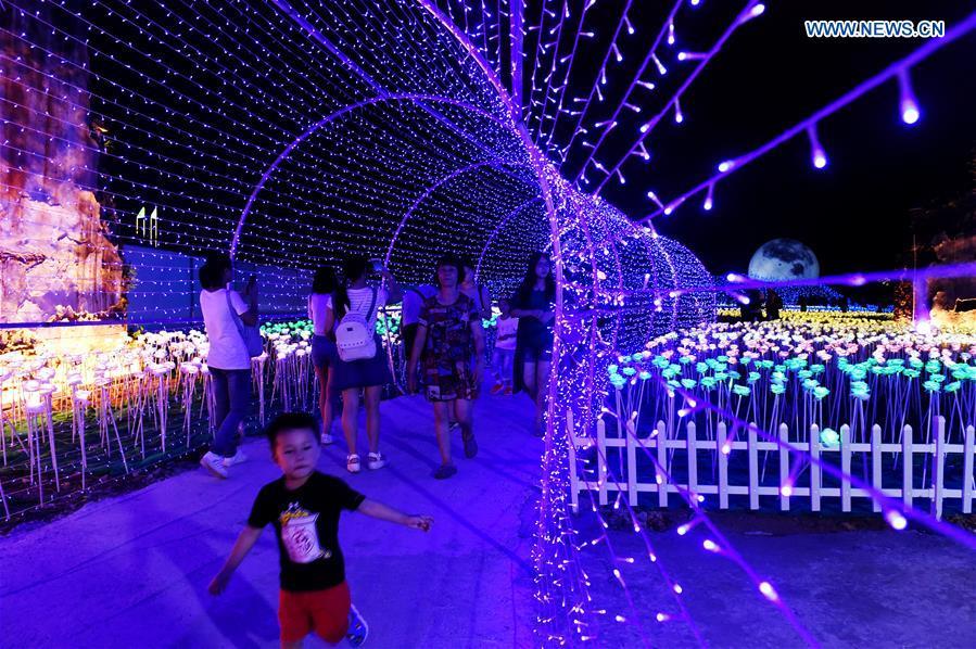 Lighting Show Of 30 000 Led Roses Open To Public Se China