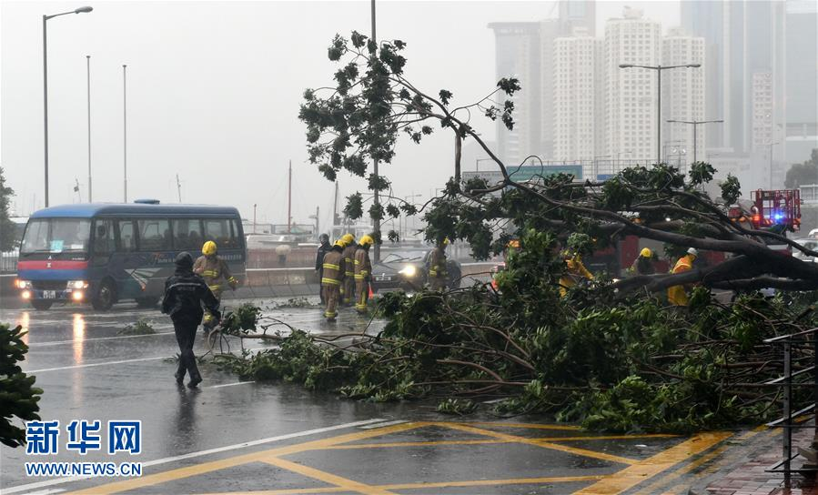 10月21日,消防员在香港铜锣湾清理倒塌的大树。新华社记者 卢炳辉 摄