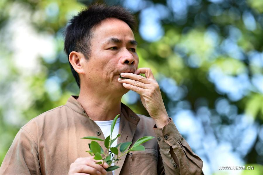 'Leaves may be the oldest, simplest and most convenient musical instrument,' said Qiu, 51, the best-known leaf-blowing musician in China