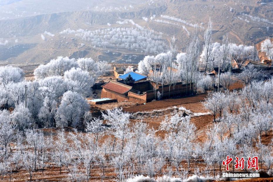 黄土高原甘肃陇西山区现雾凇美景