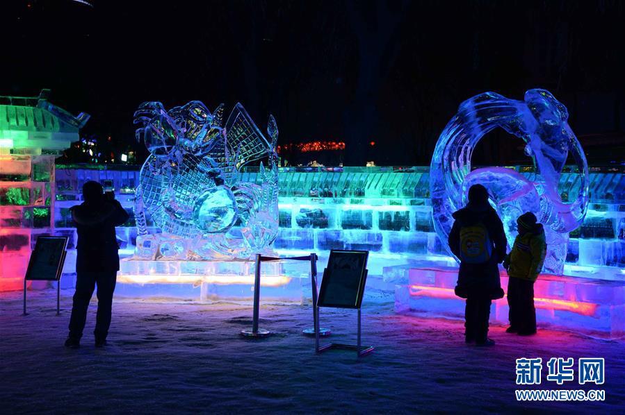 组图:七彩冰灯打造梦幻冰世界